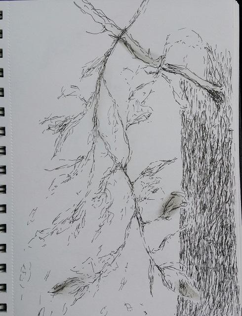 sketch-linda-sgoluppi-27-oct-2016b