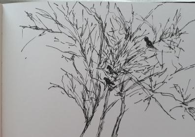 Night drawing - Linda Sgoluppi (6)